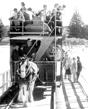 Horse Tram early days -  Kim Bayly at the reins with Hope.